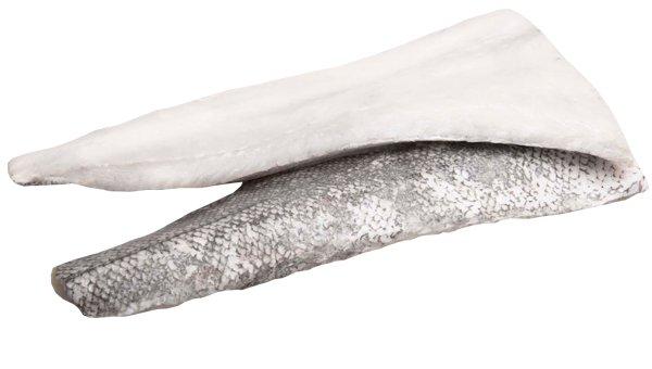 Merluccius capensis - paradoxus - 5